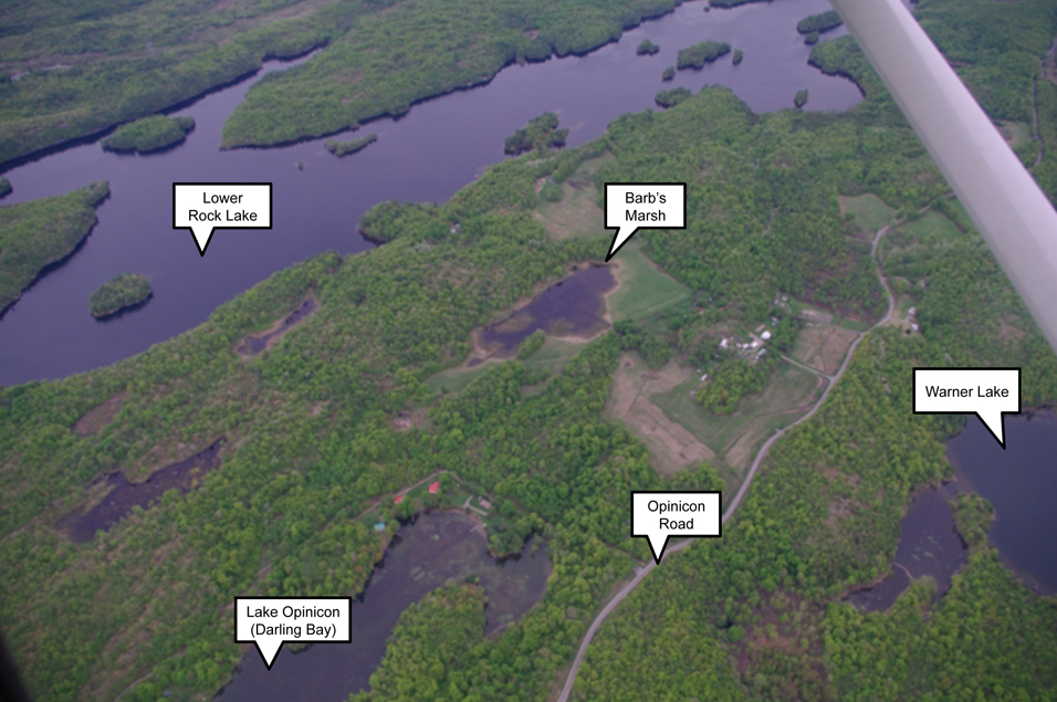 Aerial view of Barb's Marsh